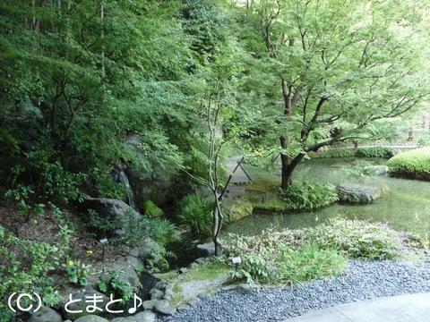 山崎の名水が流れる庭園
