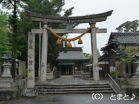 小浜神社 鳥居