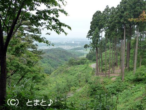 直江屋敷からの眺め