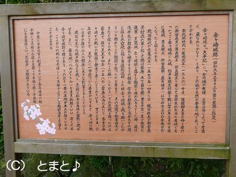 金ヶ崎城跡説明
