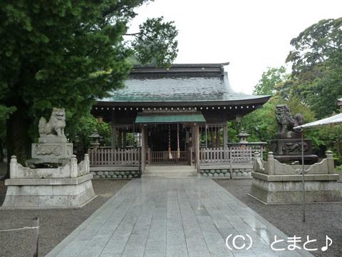 小浜神社 拝殿
