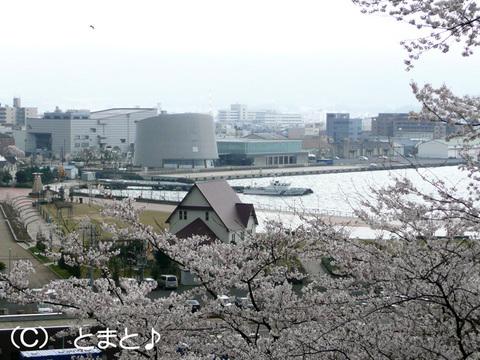 金ヶ崎城跡から敦賀港を望む