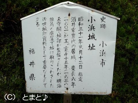 小浜城址について