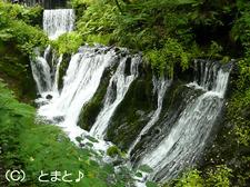 白糸の滝下流