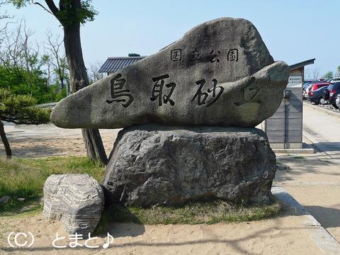 鳥取砂丘の石碑