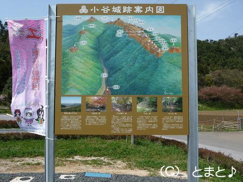 小谷城跡案内図