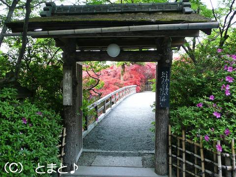 錦水亭入口の門