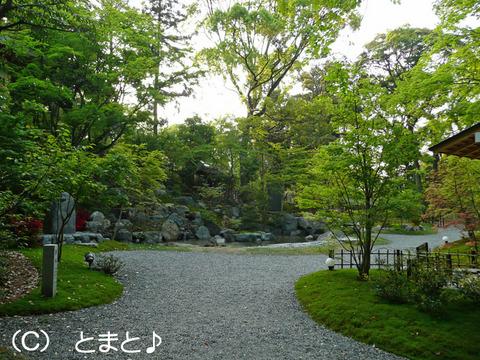 紅葉庭園「錦景苑」