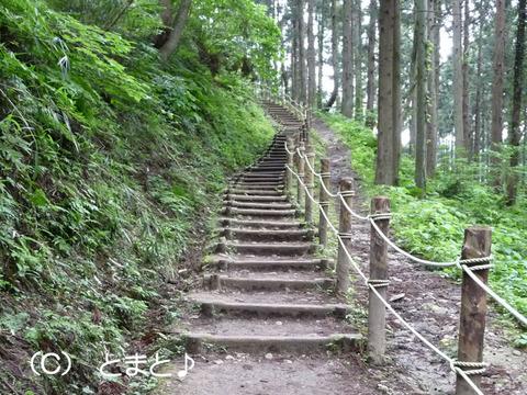 春日山神社から千貫門へのクランク状の道