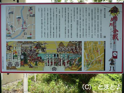 姉川の合戦説明看板